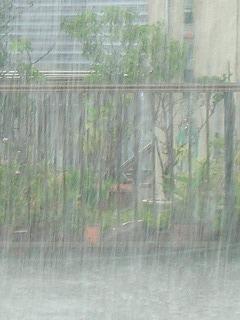 突然降り出した那覇の雨 010.jpg